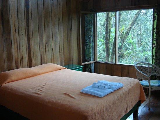 Hosteria Mariposas de Mindo: Room