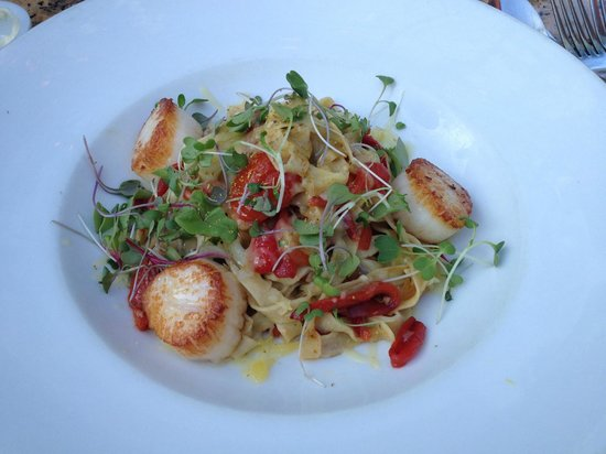 LaSalette Restaurant: Day Boat Scallop pasta