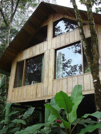 Hosteria Mariposas de Mindo: Lodge