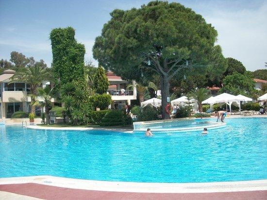 Jacaranda Club & Resort: бассейн