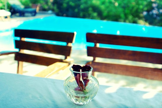 Assos Alarga, Bed and Breakfast: by the pool