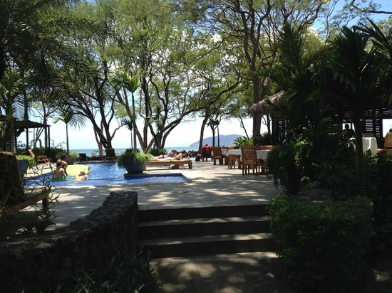 Langosta Beach Club : View from the pool deck