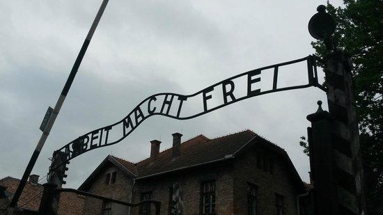 Krakow Tours: Auschwitz gates