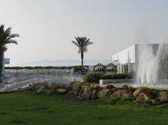 Avra Beach Resort Hotel - Bungalows: Widok na basen