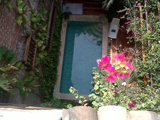 Hotel Don Pedro de Heredia : piscina