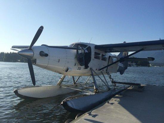 Harbour Air Seaplanes: Sea plane