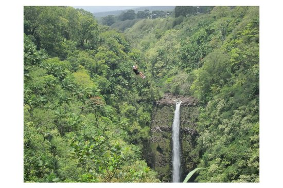 Skyline Eco Adventures - Akaka Falls: Akaka Falls