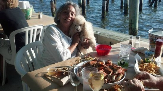The Masthead at Pier Street: Pet Friendly deck!