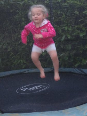 Rock House Farm Holiday Cottages: trampoline in the garden went down well
