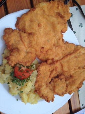 Gasthaus Wilder Mann: What a schnitzel!