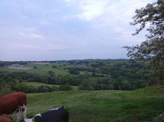 Rock House Farm Holiday Cottages: lovely views from the garden