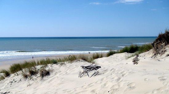 Crêperie TY BILIG : la dune