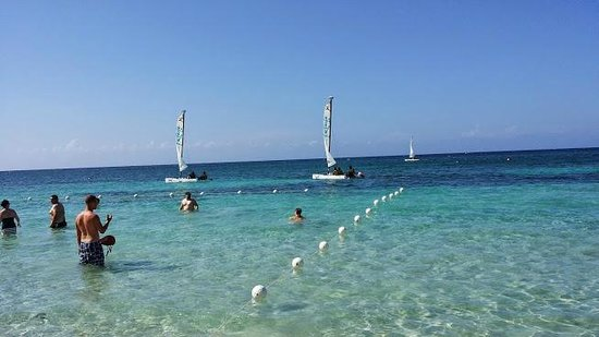 Beaches Ocho Rios Resort & Golf Club : Wind Sailing