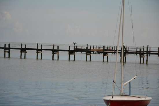 Islander Resort, a Guy Harvey Outpost: Steg