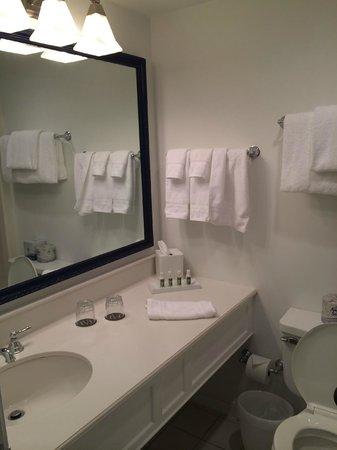 Harbor View Hotel: bathroom