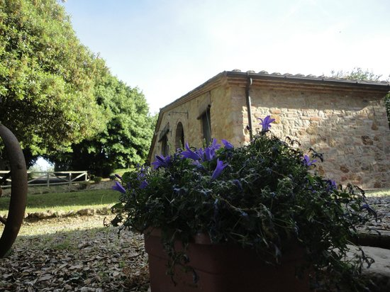 Agriturismo le Caggiole: Lovely Room