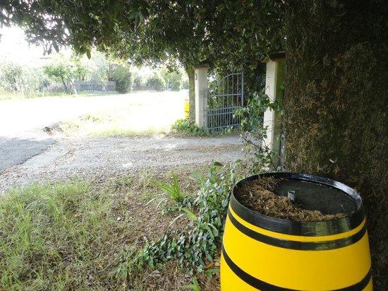 Agriturismo le Caggiole: Beautiful Grounds