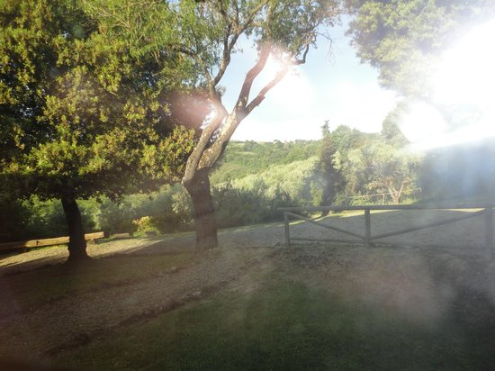 Agriturismo le Caggiole: WHAT A VIEW