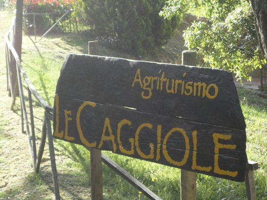 Agriturismo le Caggiole : Welcome