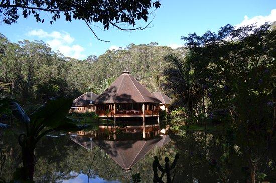Vakona Forest Lodge : Vakona Lodge