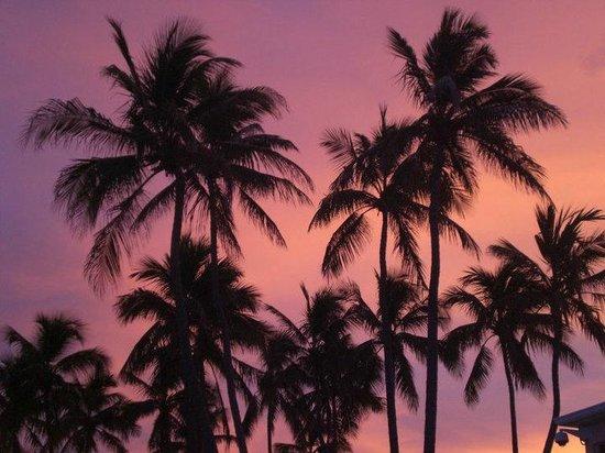 Breezy Palms Resort : Sunset