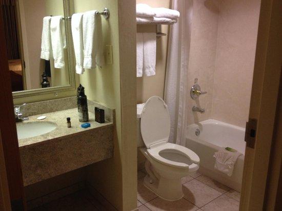 Holiday Inn Express Lawrenceville: Bathroom