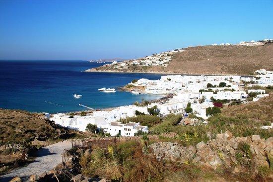 Petinos Hotel: Platys Gialos town from above