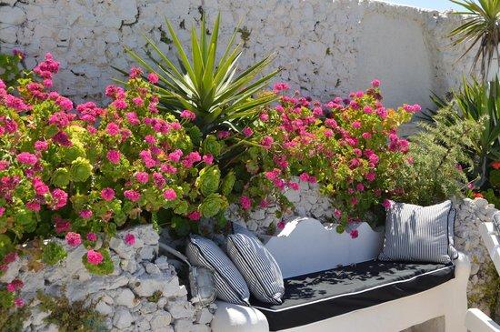Santorini's Balcony: Well kept pool area.