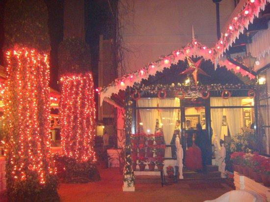 The Elgin, Darjeeling : Christmas coming....