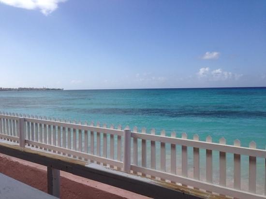 Butterfly Beach Hotel: a view from breakfast