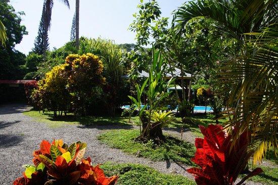 Hotel Nirvana by the Sea : Jardin