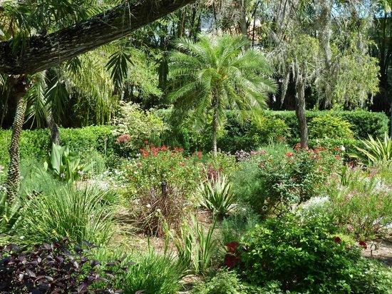 Edison & Ford Winter Estates: Gardens