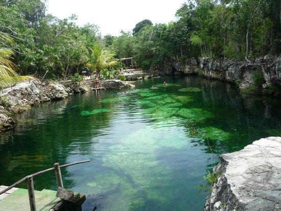 Grand Sirenis Riviera Maya Resort & Spa : excursion to coba and open area cenote
