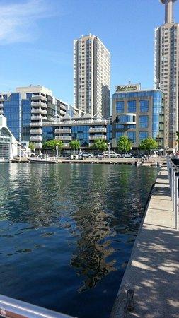 Radisson Admiral Toronto Harbourfront : Hotel