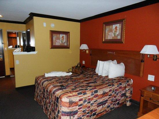 Days Inn Sacramento Downtown: Zimmer