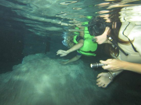 Edventure Tours: Swimming in the second cenote