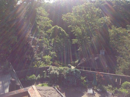 Alpenhof Bed and Breakfast: Morning has broken!