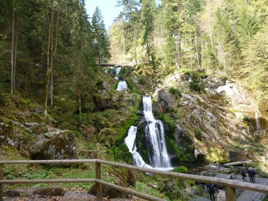 Triberger Waterfall: Standard view