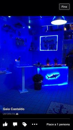 Pescheria lo squalo