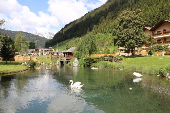 Alphotel Tyrol: Laghetto dell'albergo e parco giochi bimbi