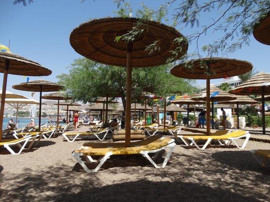 Crowne Plaza Hotel Eilat : Пляж отеля, полотенца выдают в отеле