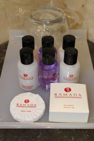 Ramada Istanbul Grand Bazaar: Les produits que l'hôtel offre
