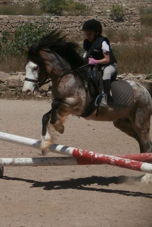 Centro hípico Horse Riding Adventures in Tenerife: Millie aged 7 taught & cared for by Jim & Sara .. Amazing