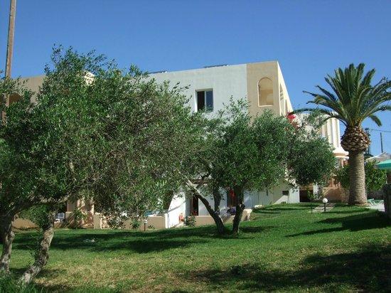 Vardis Olive Garden: tuin