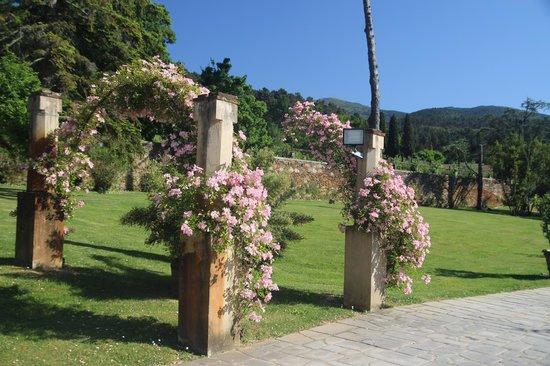 Albergo Villa Marta: Just one little corner of an amazing property