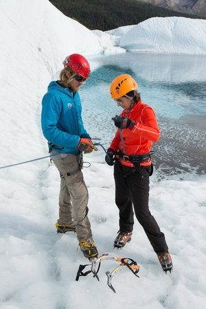 Wild Alpine - Day Tours: Guides show and teach rope skills and climbing technique throughout the day