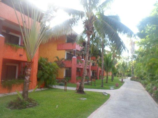 Iberostar Tucan Hotel: jardines