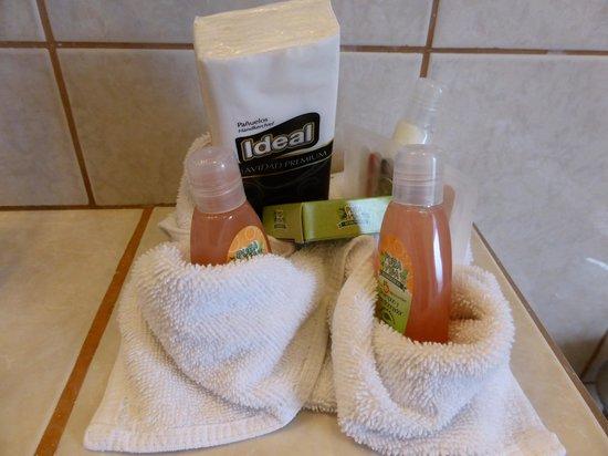 Adventure Inn : Bathroom freebees