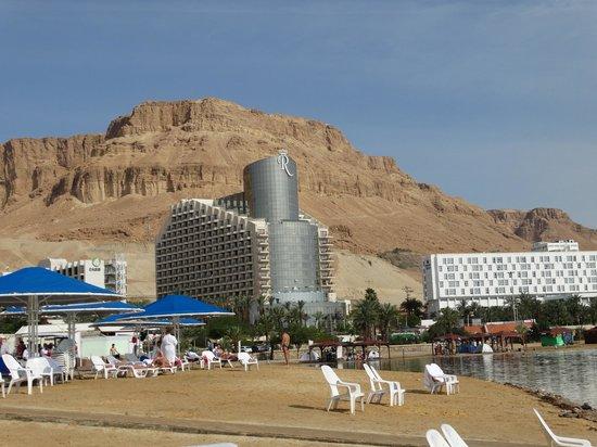 Prima Oasis Dead Sea: Панорама