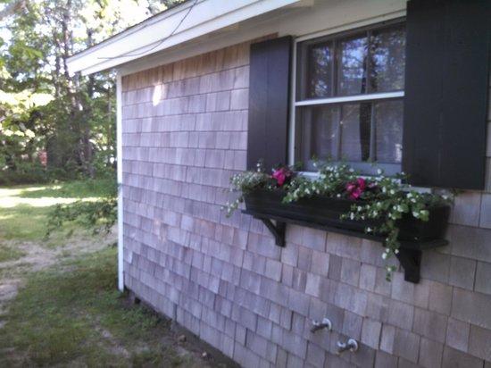 Cottage Grove: Large studio window box